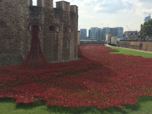 ceramic poppies, tower of london
