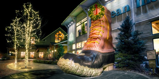 L. L. Bean, northern lights image