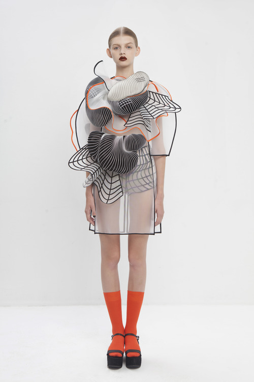 noa raviv, graduate collection