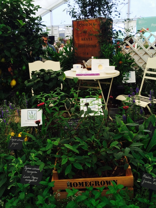 hampton court palace flower show, 2015