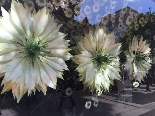 window display, Selfridges, gigantic floral creations, Apple watch