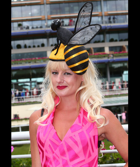 ascot, ladies day, 2016, bee express co uk
