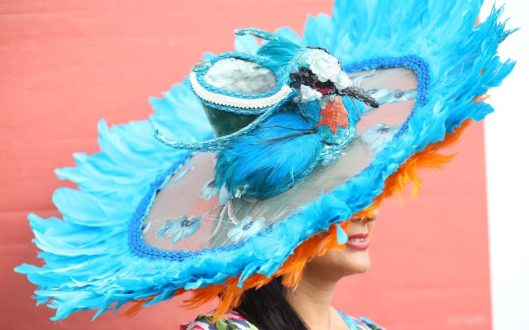 ascot, ladies day, 2016, blue_orange feathers, telegraph 100870670_Editorial_use_only_No_merchandising_For_Football_images_FA_and_Premier_League_restrictions-xlarge_trans++kUE_BTgBOQu3VWKvpDGX9Yo2a2KTgFhj3E_9Q4PM37M