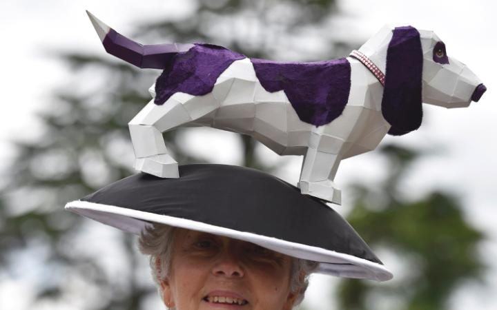 ascot, ladies day, 2016, hound purple_w